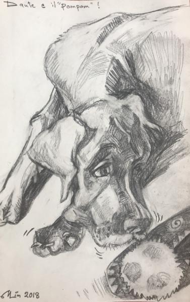 Dante - charcoal